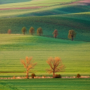 Colours of Moravia